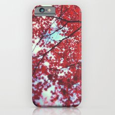 Autumn Red 2 iPhone 6s Slim Case