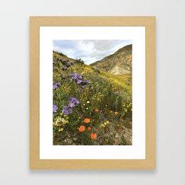 Wildflowers in California Framed Art Print