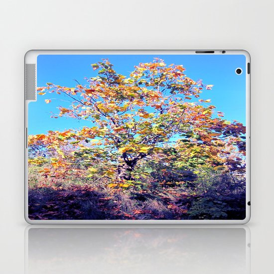 Autumn Lone Tree Laptop & iPad Skin