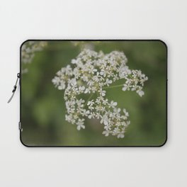 Anthriscus sylvestris Laptop Sleeve