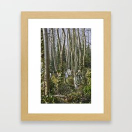 Gravestones in Highgate Cemetery, London Framed Art Print