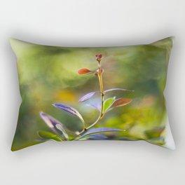 Barberry Color Rectangular Pillow