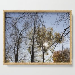 trees in the autumn season Serving Tray
