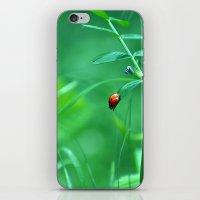ladybug iPhone & iPod Skins featuring Ladybug by Arevik Martirosyan