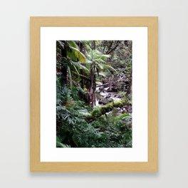 Tropical Forest 09 Framed Art Print