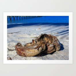 Lovely Bunch of Coconuts Art Print