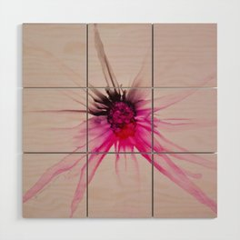 Spider Wood Wall Art