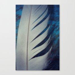 Delicate Endeavors Canvas Print