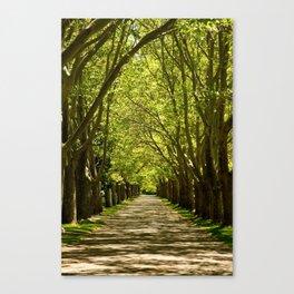 Summer Tunnel Canvas Print