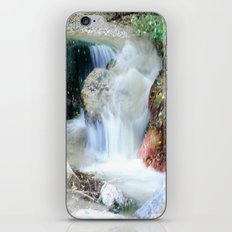 Letting the Days Go By iPhone & iPod Skin