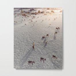 Above reindeer farm in Norway Metal Print