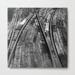 Bailey Tracks Metal Print