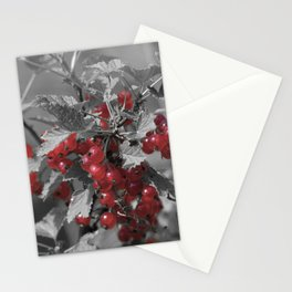 Redcurrant Stationery Cards