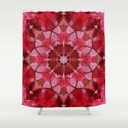 Red autumn leaves kaleidoscope - Cranberrybush Viburnum Shower Curtain
