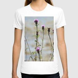 Highland Thistle T-shirt