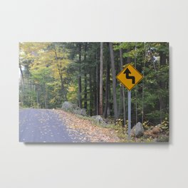 Winding Path Metal Print