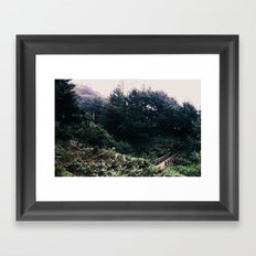 Bridge to the Forest Framed Art Print