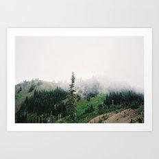 Olympic Peninsula Art Print