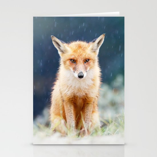 I Can't Stand the Rain (Red Fox in a rain shower) by roeselien