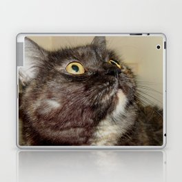 Looking for a new home Laptop & iPad Skin