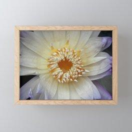 White Lily Framed Mini Art Print