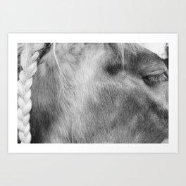 Gypsy Braid Art Print