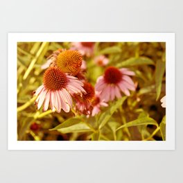 Flowers in the Greenway Art Print