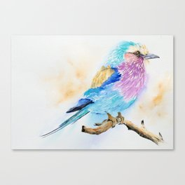 The Fuzzy Ball - Lilac-breasted roller bird Watercolor Painting Print by Nisha Sehjpal Canvas Print