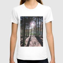 Pine Trees and Low Scottish Morning Sunshine T-shirt