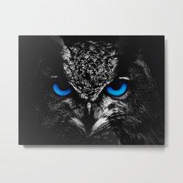 Blue eyes owl Metal Print