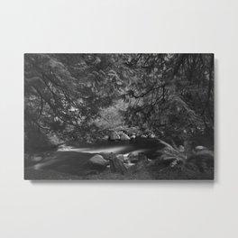 Lynn Headwaters in Infrared (B&W) Metal Print