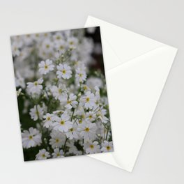 Floating with the wind Stationery Cards