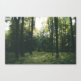 Forest XIX Canvas Print
