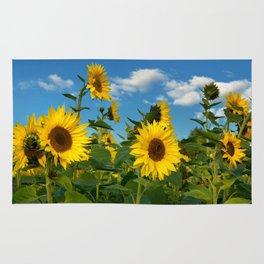 Sunflowers 11 Rug