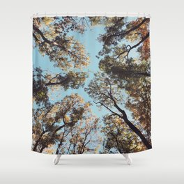 Look at the Sky - Forest Shower Curtain