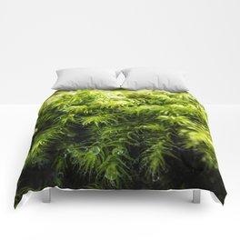 Moss Comforters