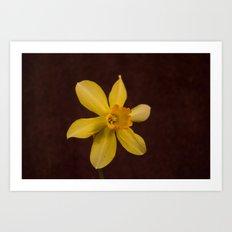 daffodilly Art Print