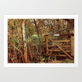 Close The Gate Art Print