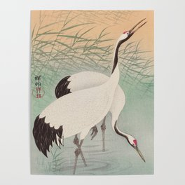 Two cranes in the lake - Japanese vintage woodblock print Poster