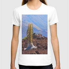 Scenic Silversword T-shirt