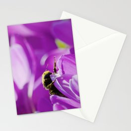 Bee Surrenders Stationery Cards