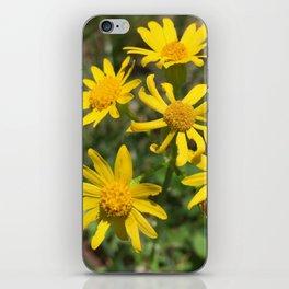 Eldorado Spring Flowers iPhone Skin