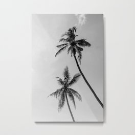 Black and White Two Palms Metal Print