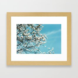 flower photography by Jerry Wang Framed Art Print
