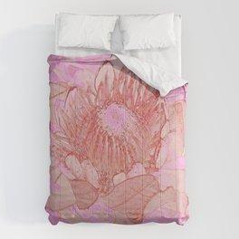 Pink Protea Comforters