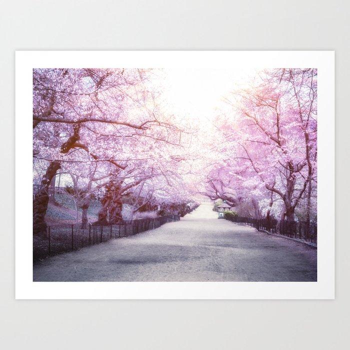 Central Park Cherry Blossom Path - New York City Art Print
