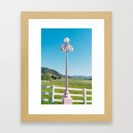 Madonna Inn Framed Art Print