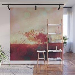 Golden Sunset Nature Photography Wall Mural