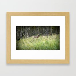 Knock in the Woods and the Woods Knock Back Framed Art Print