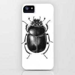 Beetle 13 iPhone Case